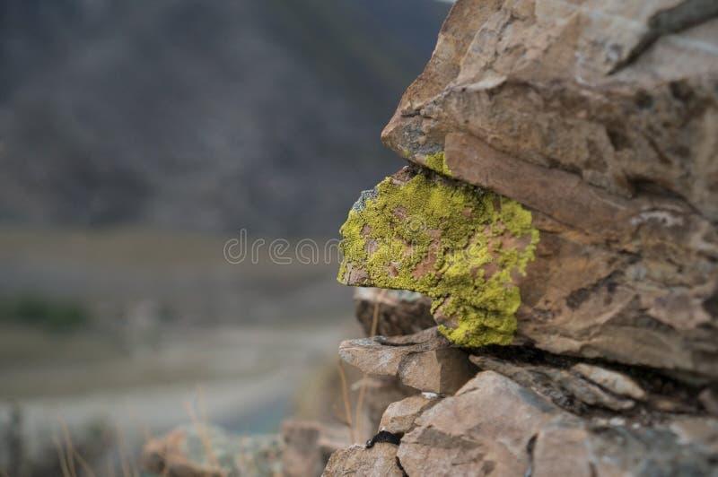 Download Pedra musgoso imagem de stock. Imagem de saturated, europa - 65581351