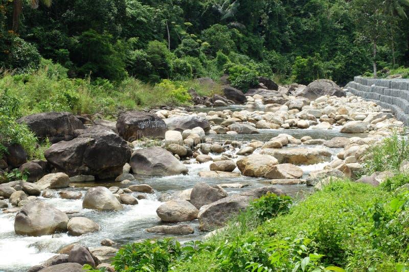Pedra no rio imagens de stock