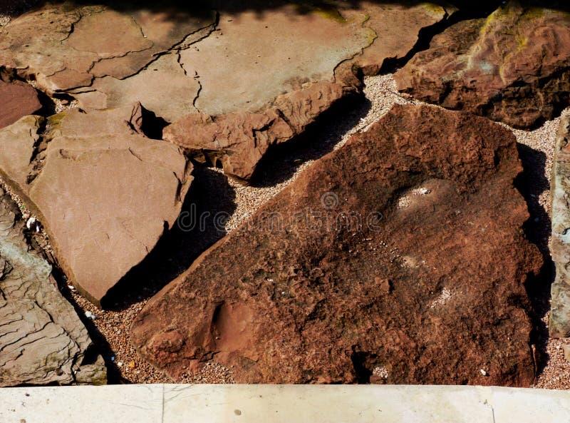 Pedra vermelha da areia que pavimenta com superfície rachada mergulhada áspera rústica e textura forte do grão foto de stock