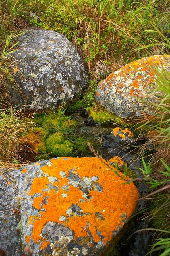 Pedra vermelha na água foto de stock royalty free