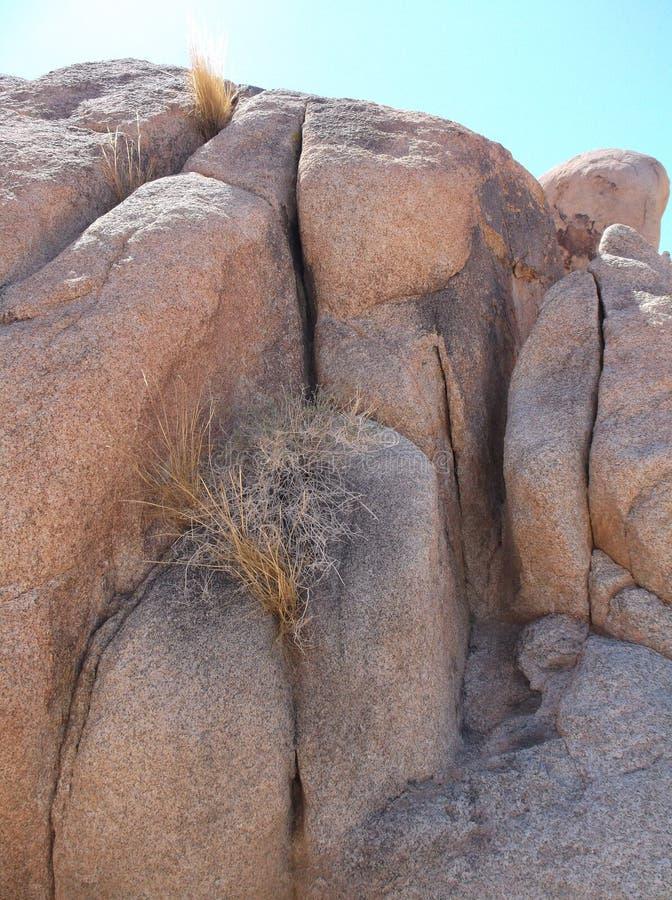 Pedras únicas no parque nacional joshua fotografia de stock royalty free