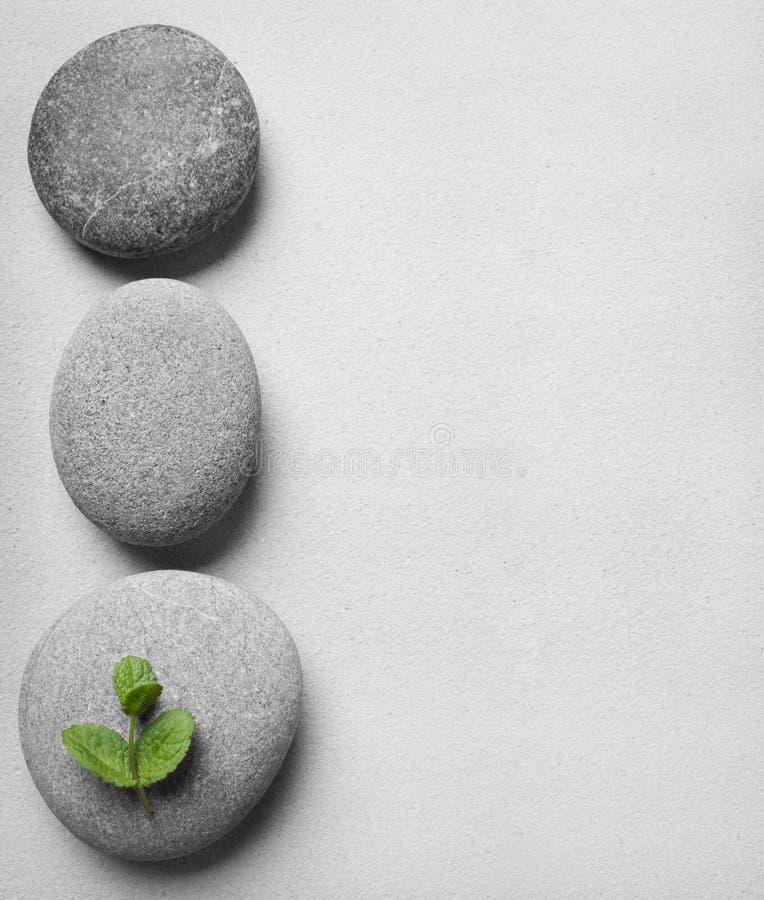 Pedras com folhas verdes imagem de stock royalty free