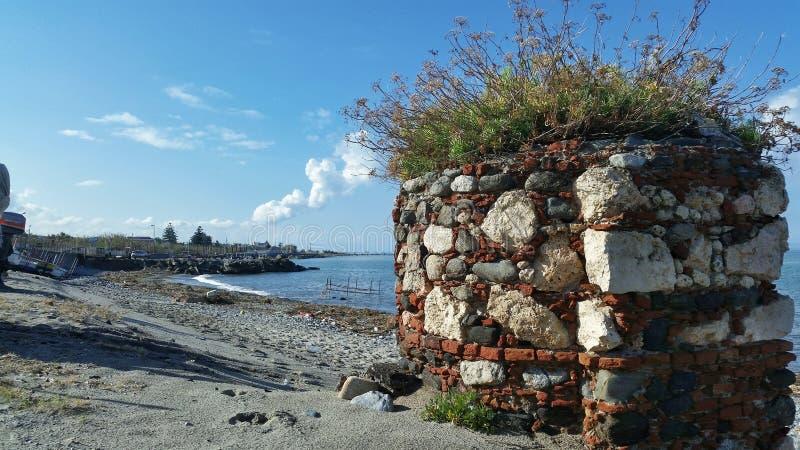 Pedras com plantas em uma praia do verão imagens de stock