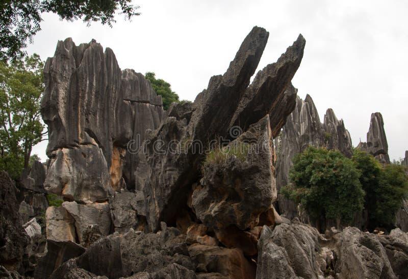 Pedras da floresta em Kunming, China imagens de stock