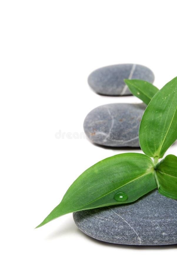 Download Pedras de ajuda imagem de stock. Imagem de relaxar, beleza - 10064633