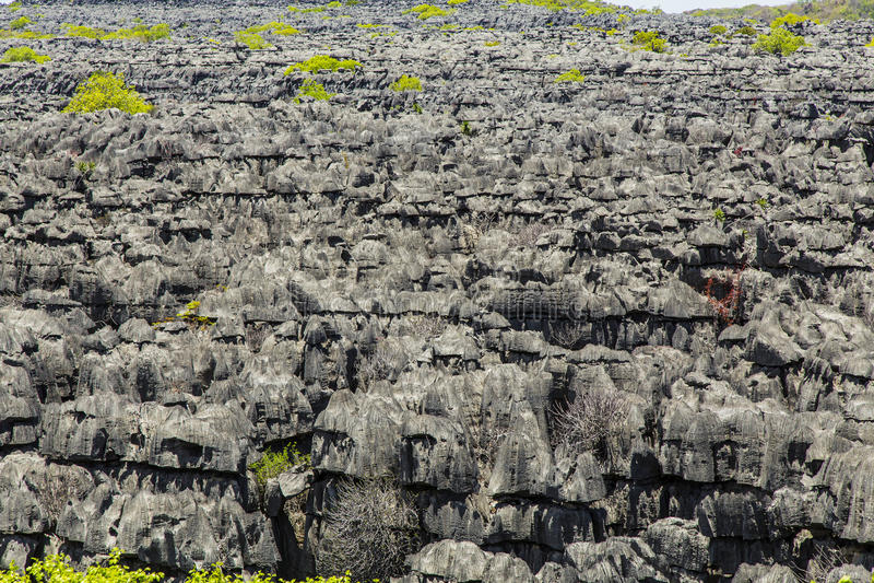 Pedras de Ankarana Tsingy, marco do norte de Madagáscar fotografia de stock royalty free