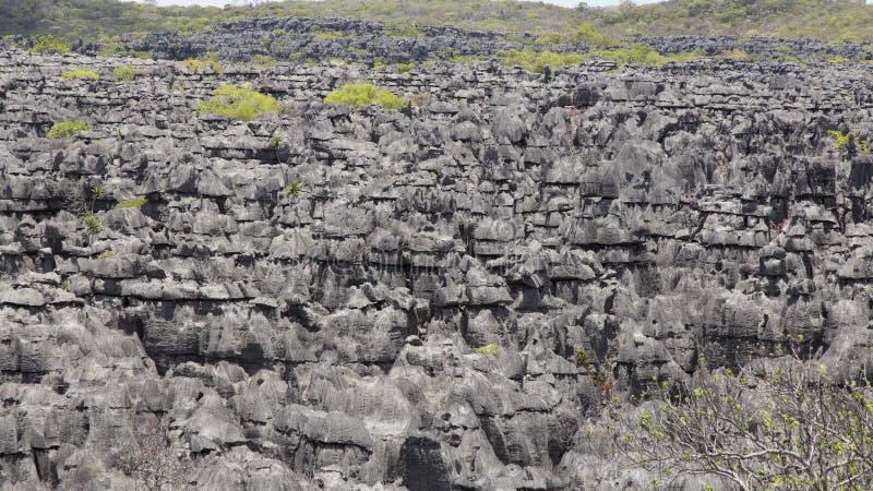 Pedras de Ankarana Tsingy, marco do norte de Madagáscar fotografia de stock