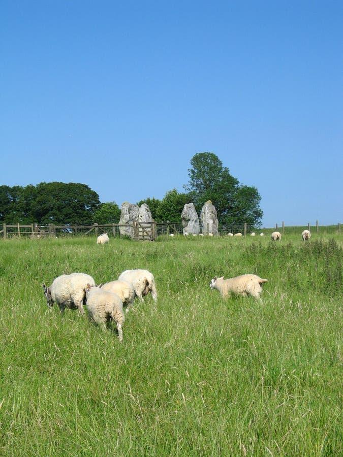 Pedras de Avebury fotografia de stock royalty free