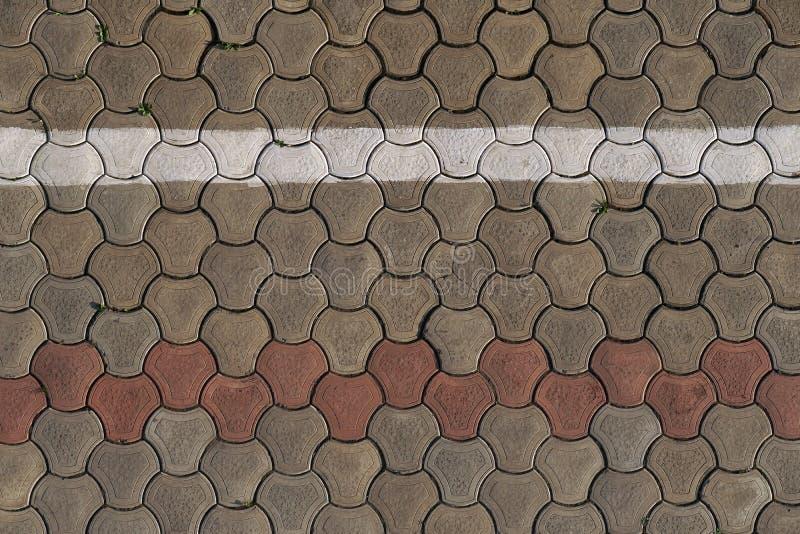 Pedras de pavimentação cinzentas cobertas com o musgo e a grama Estrada pedestre, pavimento, pyrone ou passeio imagens de stock royalty free