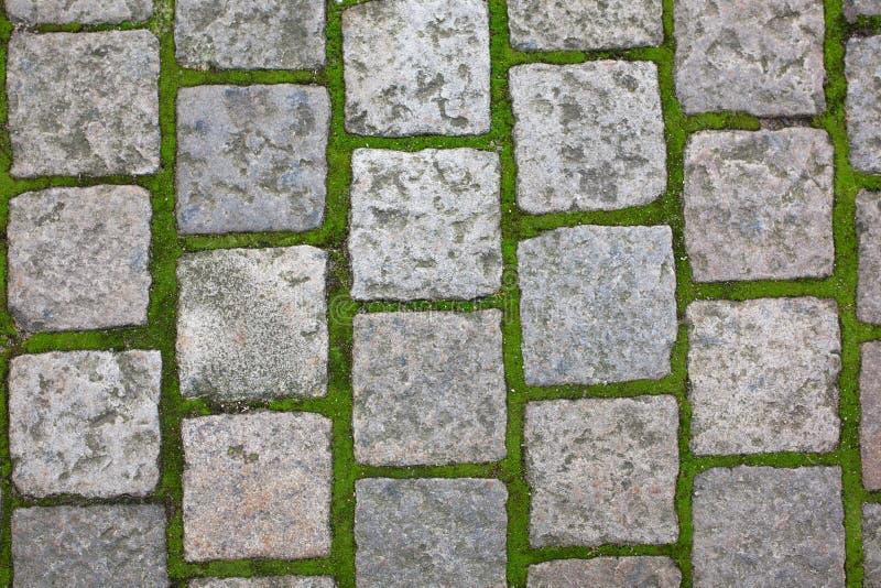 Pedras de pavimentação velhas com grama na área histórica em Praga foto de stock