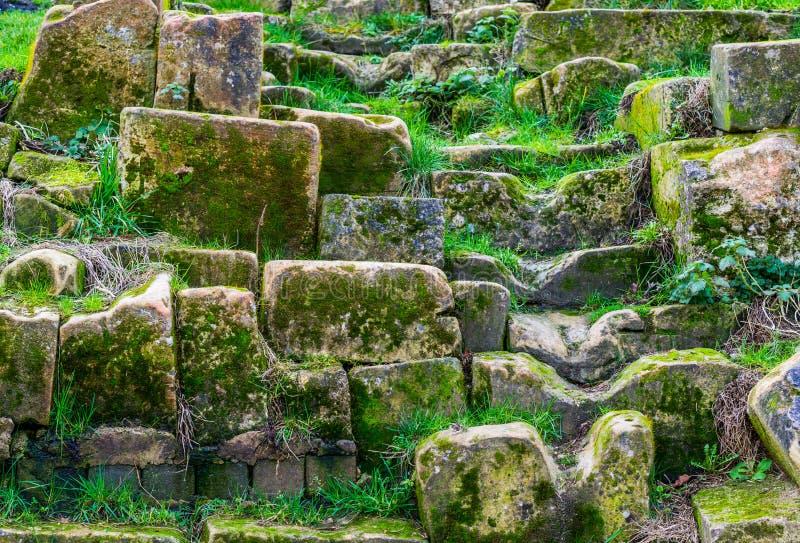 Pedras de vista históricas velhas cobertas no musgo e na grama, arquitetura do jardim e decorações, fundo natural foto de stock