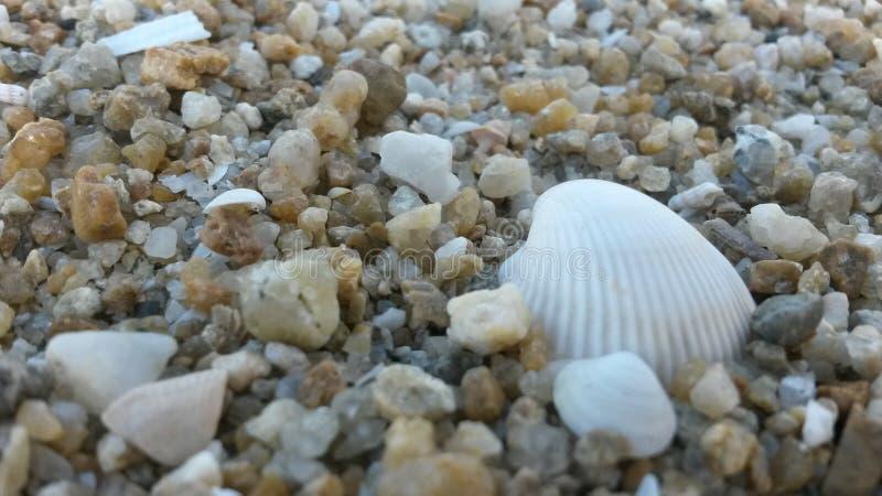 Pedras do beira-mar imagem de stock