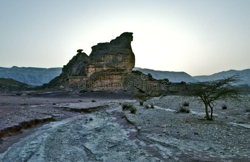 Pedras do parque de Timna imagem de stock royalty free