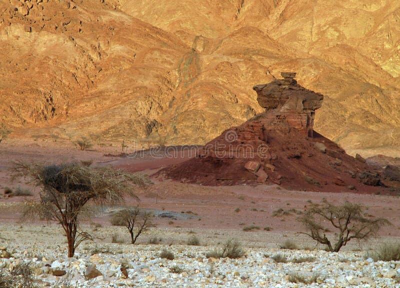 Pedras do parque de Timna imagem de stock