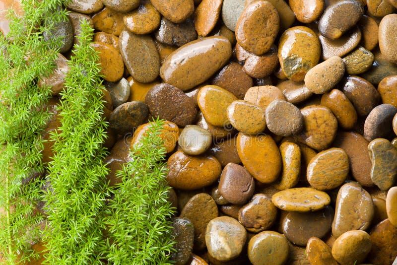 Pedras do zen com grama verde fotografia de stock