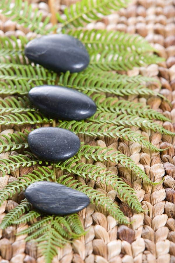 Pedras do zen em uma esteira da grama com um fern foto de stock royalty free