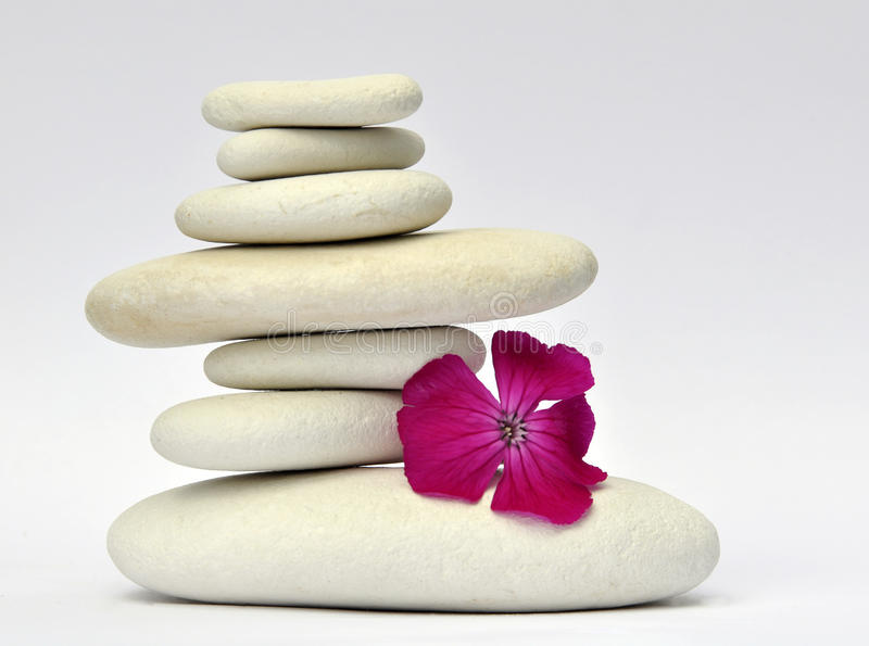 Pedras e flor fotos de stock royalty free