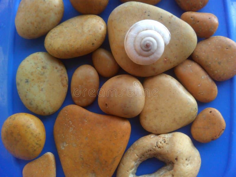 Pedras e fundo bonitos do azul do shell fotografia de stock