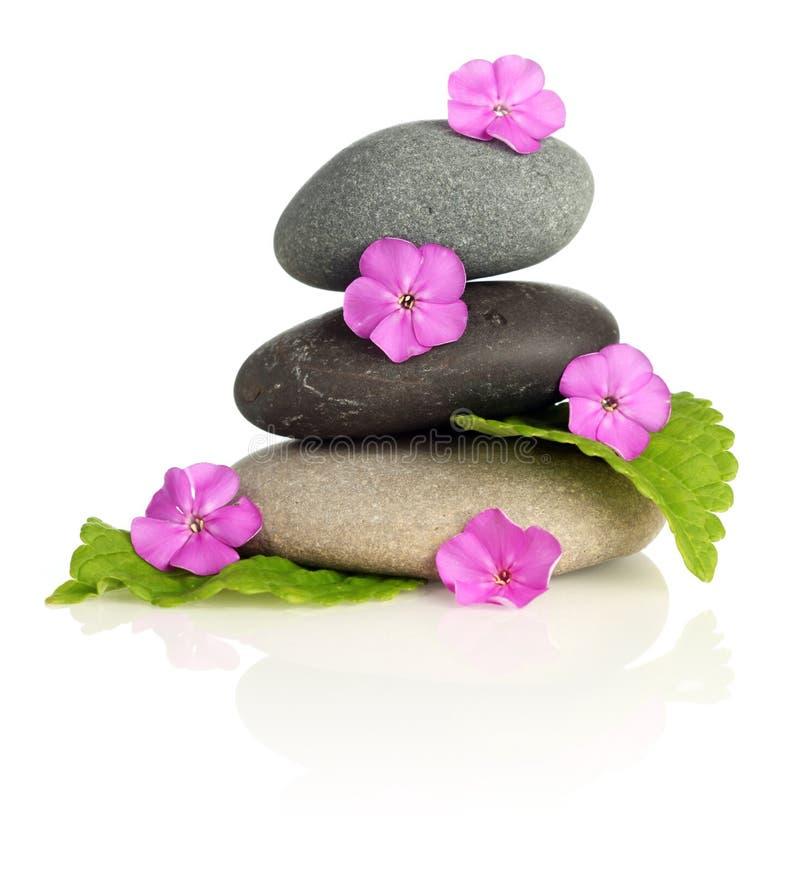 Pedras empilhadas com flores fotografia de stock