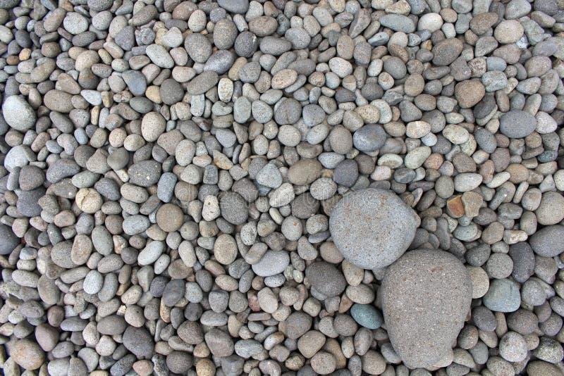 Pedras grandes entre seixos menores, no jardim fotos de stock