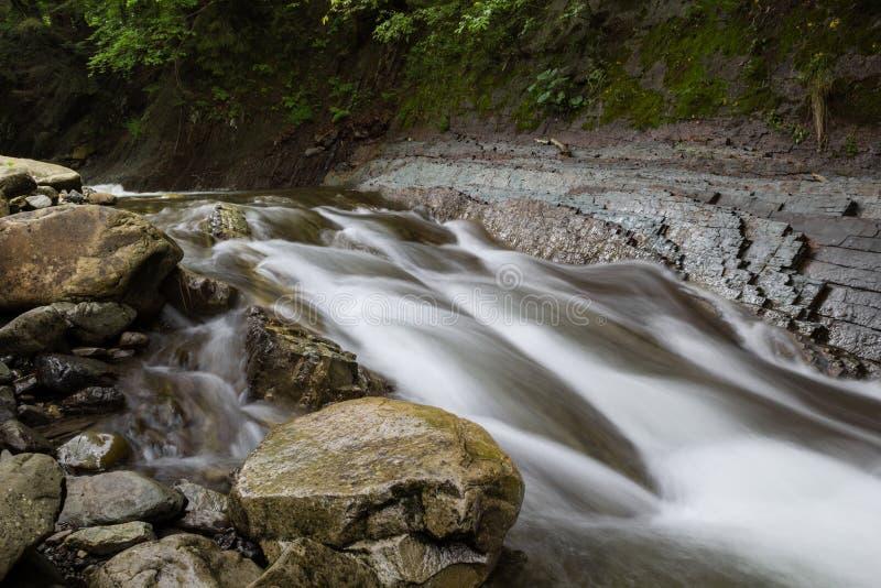 Pedras no banco do rio da floresta fotos de stock
