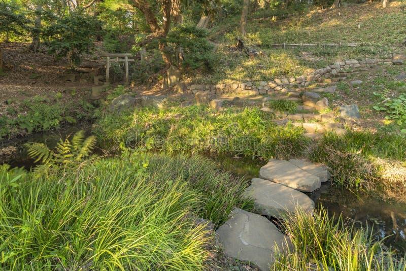 Pedras ou pedras de passo japonesas para pontes de nomes iso-watari ou tobi-ishi fotos de stock