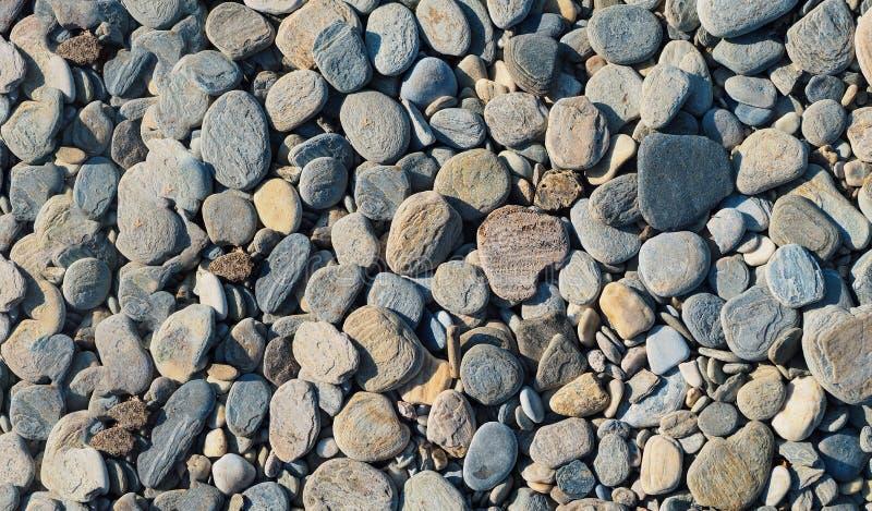 Pedras pequenas da praia no lado de mar fotos de stock royalty free