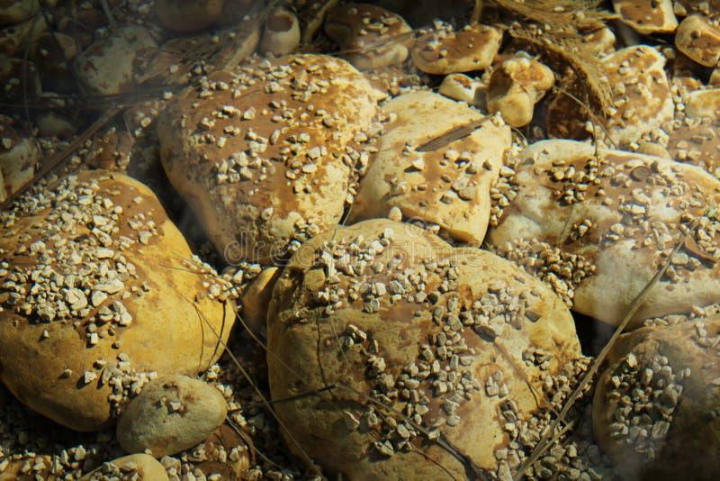 Pedras subaquáticas no jardim fotografia de stock
