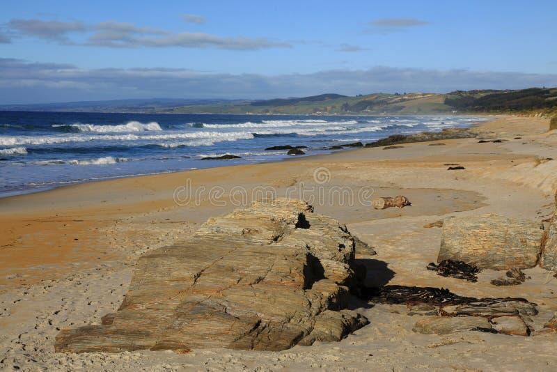 Pedregulhos ao longo do litoral de Nova Zelândia imagem de stock