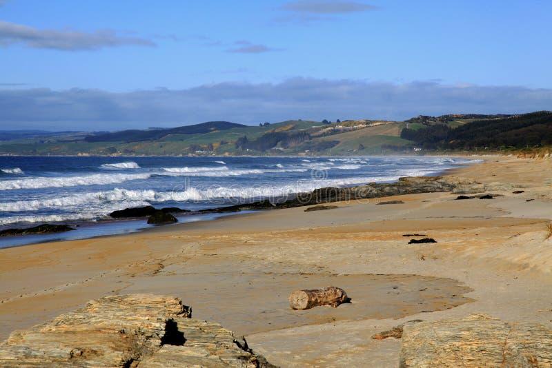 Pedregulhos ao longo do litoral de Nova Zelândia fotografia de stock