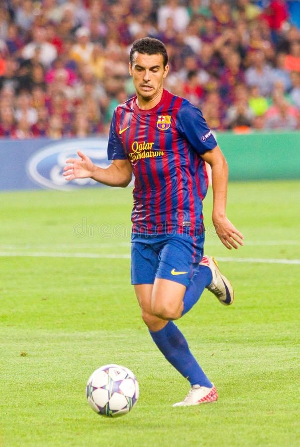 Pedro in action