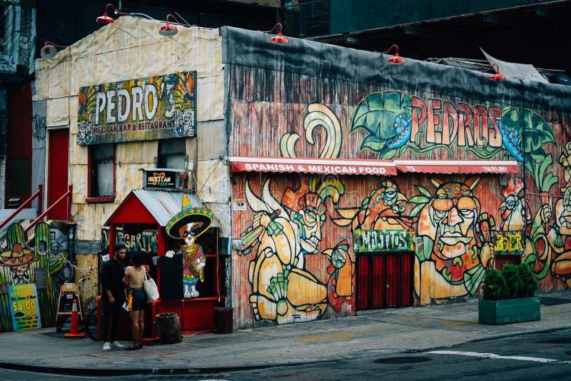 Pedro, en DUMBO, Brooklyn, New York City foto de archivo libre de regalías