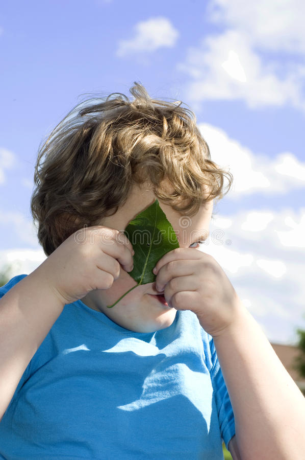 Peek-a-boo. Young boy looking through hole in leaf stock photos