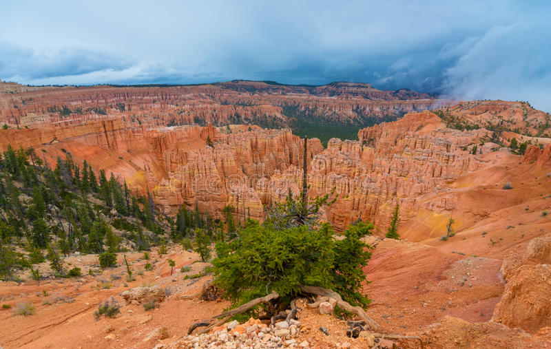 Peek-a-boo loop trail Bryce Canyon. National Park royalty free stock images