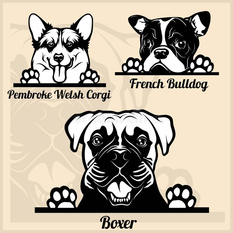 Peeking Dogs - set with dog breeds, cartoon pictures stock illustration