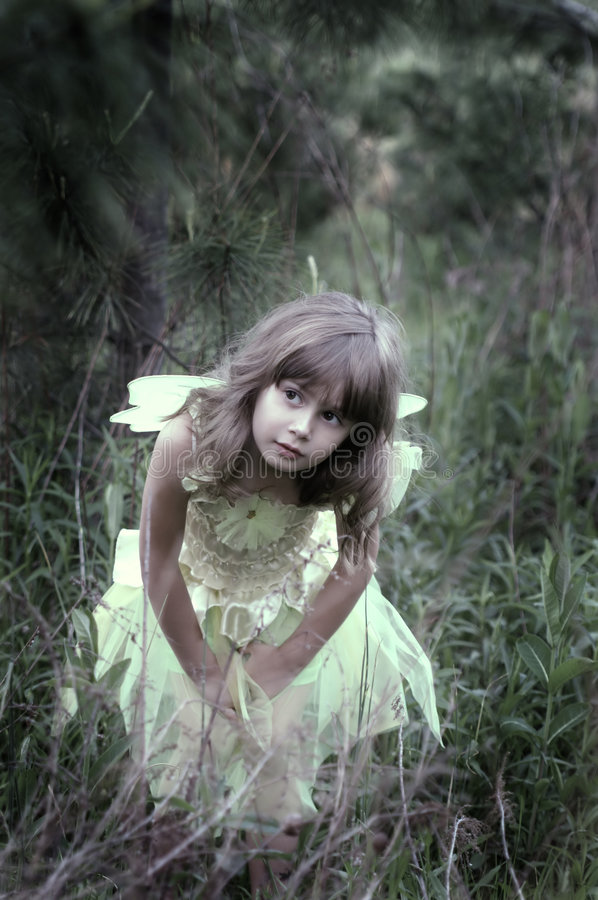 Download Peeking in the woods stock image. Image of innocence, enchanting - 2418409