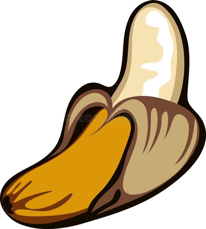 Download Peeled banana vector stock vector. Image of vitamin, healthy - 9657602