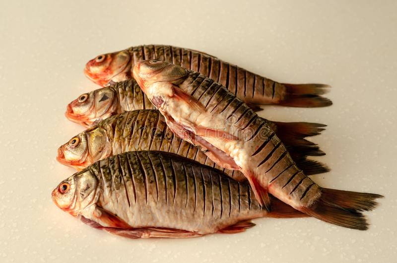 Peeled fish. Crucian carp stock photos
