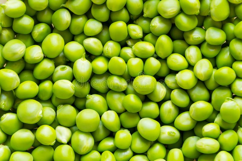 Peeled green pea background. Heap of fresh beans ready to eat. stock photography