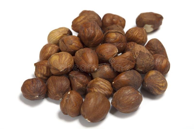 Download Peeled hazelnuts stock image. Image of organic, ingredient - 13338137