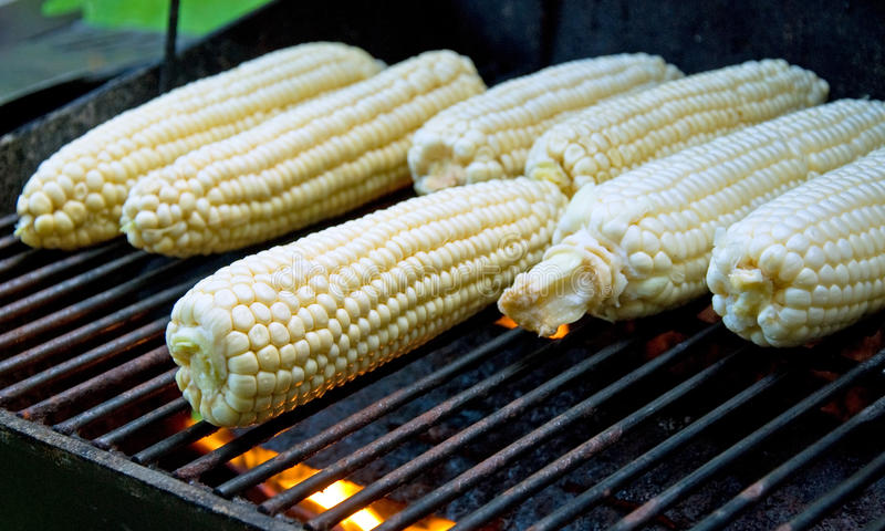 Download Peeled Raw Corns On The Grill Stock Image - Image: 17733437