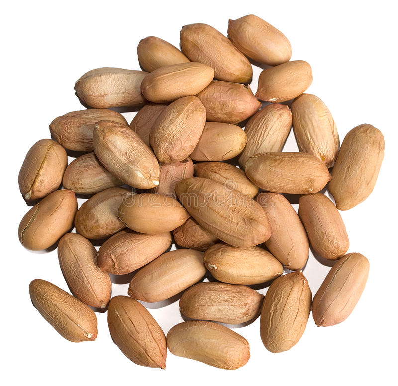 Peeled Raw Peanuts royalty free stock image