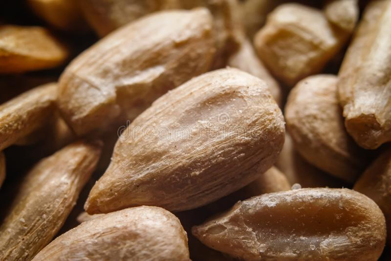 Peeled, roasted and salted sunflower seeds stock images
