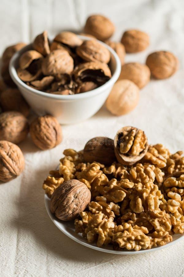 Peeled walnuts and shells stock image