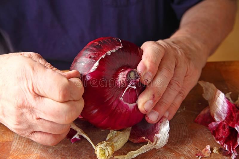 Peeling a red onion. A man peeling the rough outer skin of a large red onion royalty free stock images