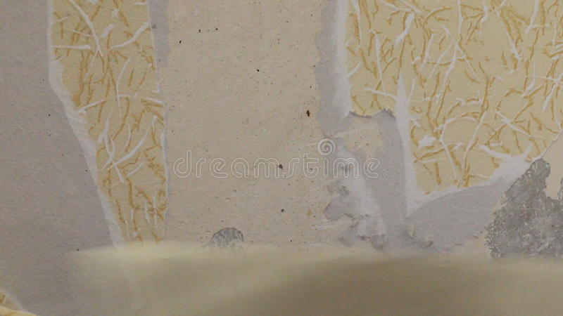 Peeling Wallpaper On Drywall Stock Video   Video Of Paint, Blue: 67398587