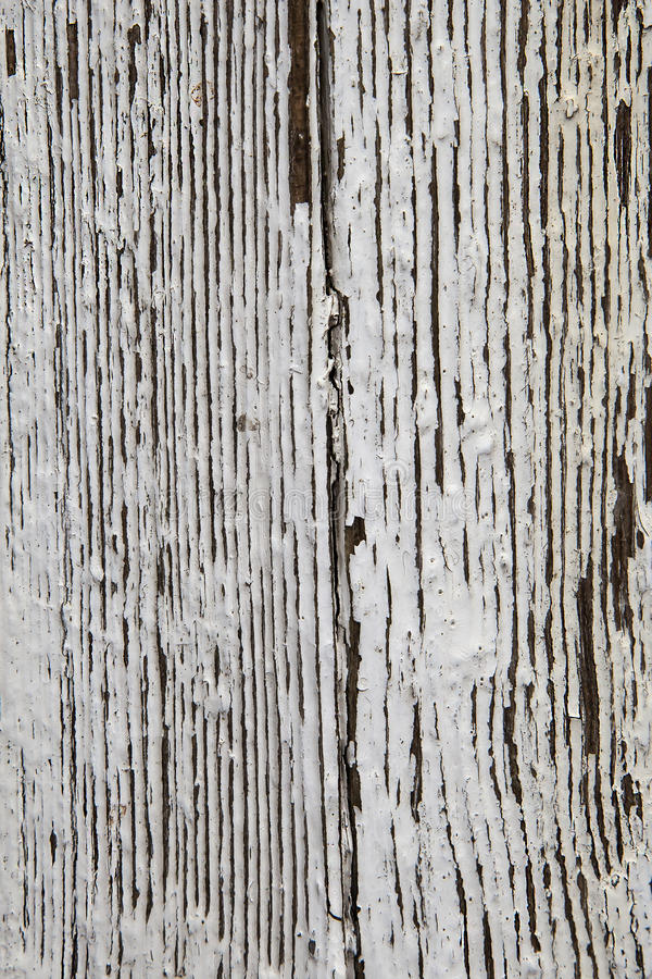 Peeling White Paint Background Texture Stock Photo Image 30435972