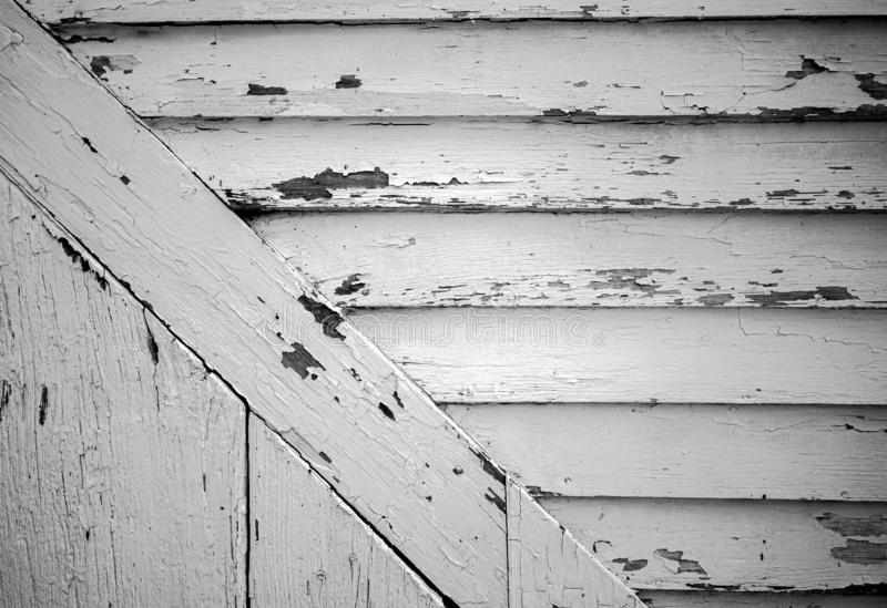 Peeling white paint on old barn board siding stock photography