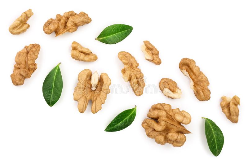 Peelled Walnuts with leaves isolated on white background with copy space for your text. Top view. Flat lay.  royalty free illustration