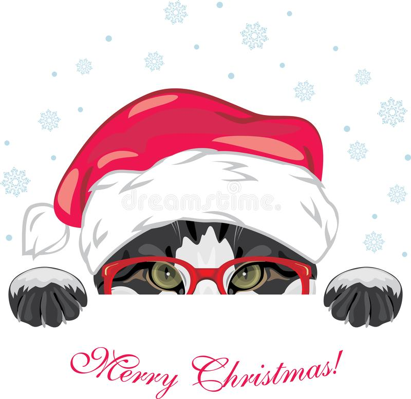 Peeping funny cat in a red glasses and Christmas cap royalty free stock photos